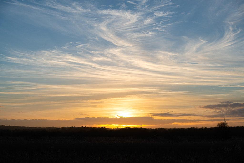 Sunset of the Roughet - Shapwick Heath, Somerset, UK. ID JB1_1557