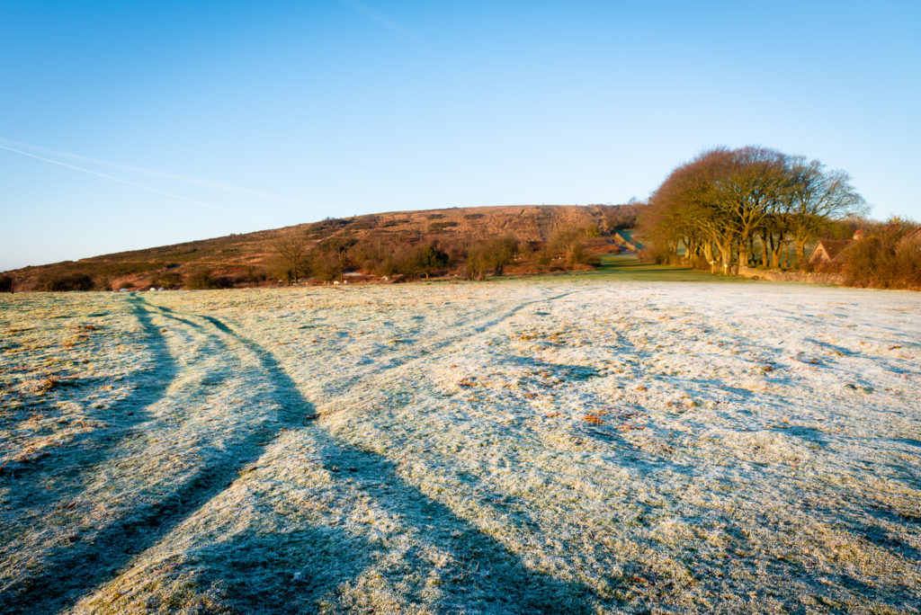 Frost - Cross Plain, Mendip Hills, Somerset, UK. ID JB1_3650