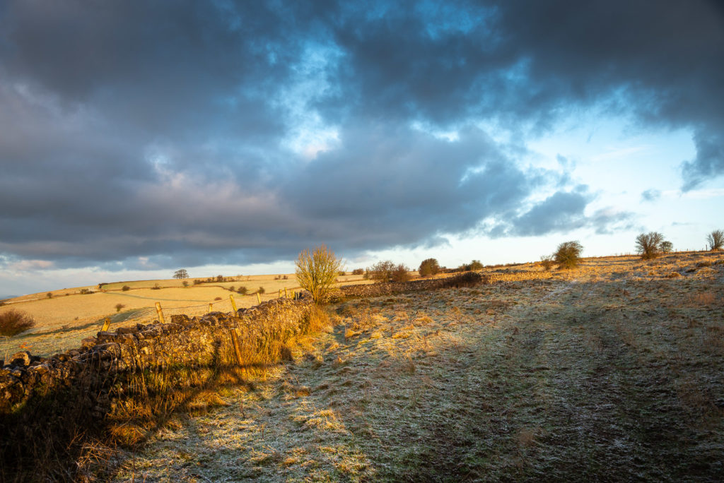 Fist snow of the year - Deerleap, Mendip Hills, Somerset, UK. ID JB1_4771