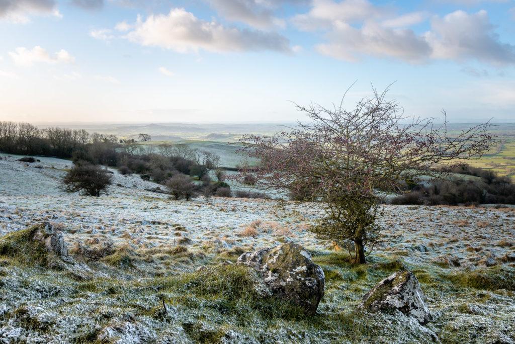 Fist snow of the year - Deerleap, Mendip Hills, Somerset, UK. ID JB1_4799H