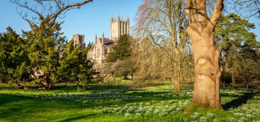 Bishops Palace - Wells, Somerset, UK. ID JB1_5722