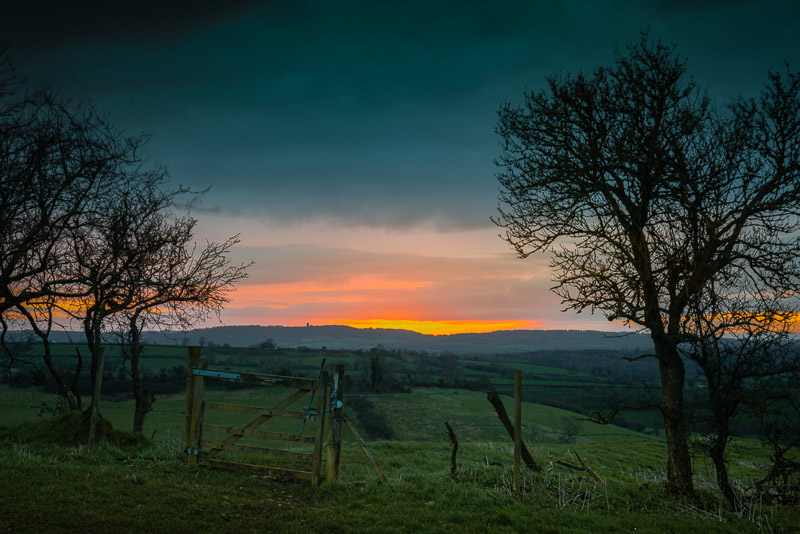 Sunrise - Green's Combe, Bruton, Somerset, UK. ID JB1_6886
