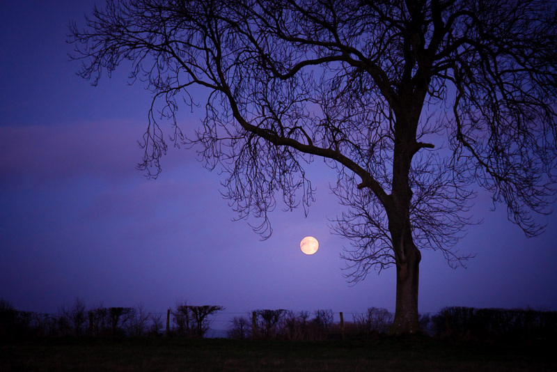 Supermoon - Somerset, UK. ID 824_4759
