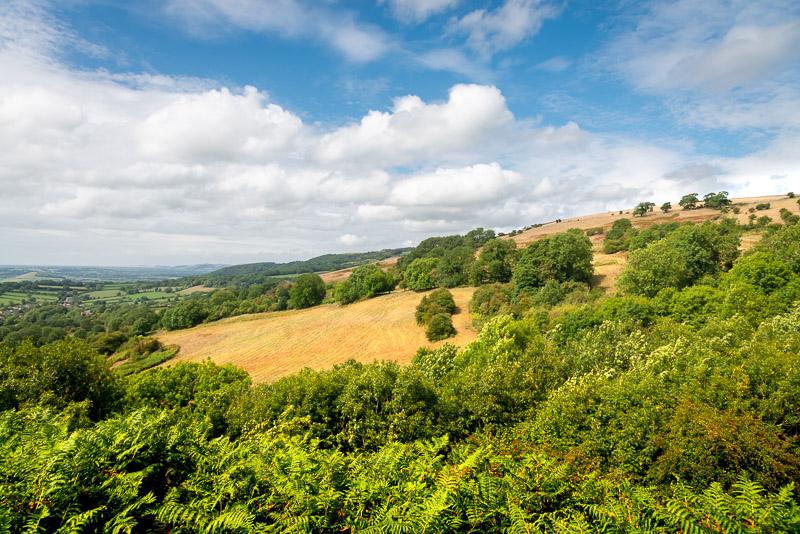 Lynchcombe - Somerset, UK. ID IG_6675
