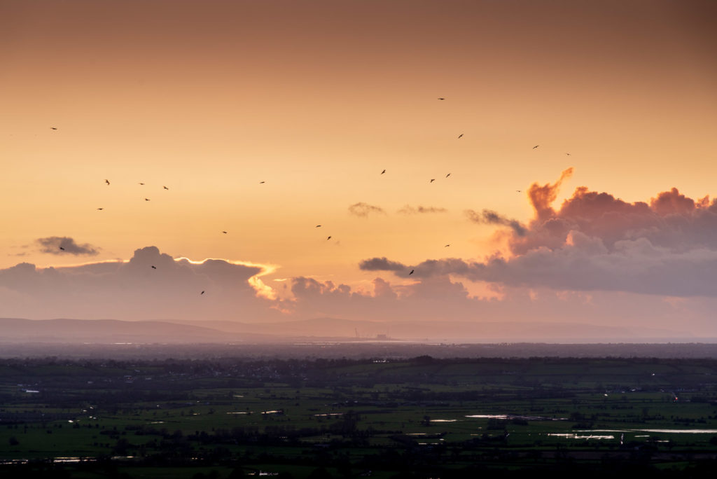 Seagulls Home - From Lynchcombe, Mendip Hills, Somerset, UK. ID JB1_8250H