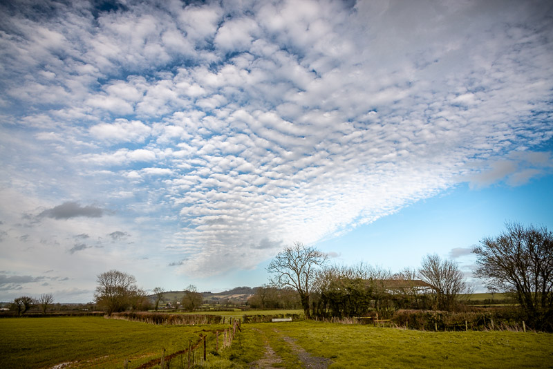Altocumulus mackerel sky - Over Creech Hill, Lamyat, Somerset, UK. ID JB1_8920