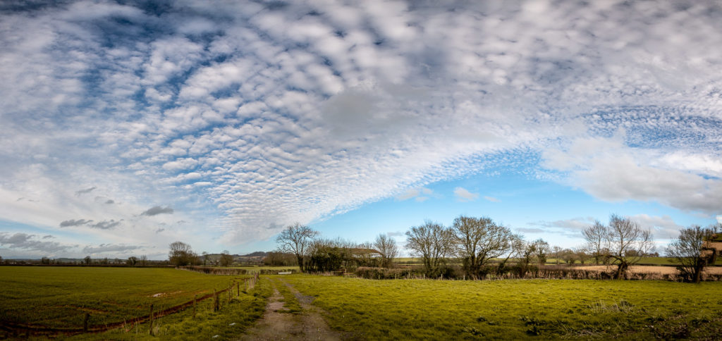 Altocumulus mackerel sky - Over Creech Hill, Lamyat, Somerset, UK. ID JB1_8926P