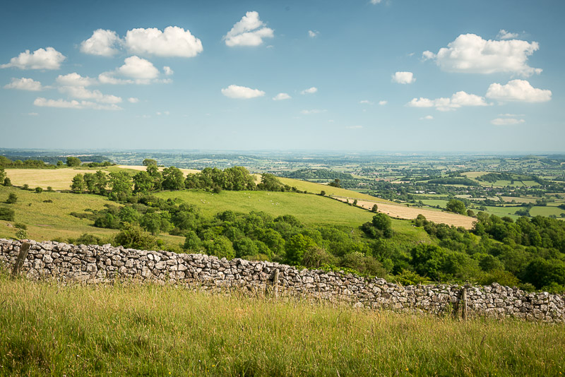 Lynchcombe - Somerset, UK. ID 822_6886
