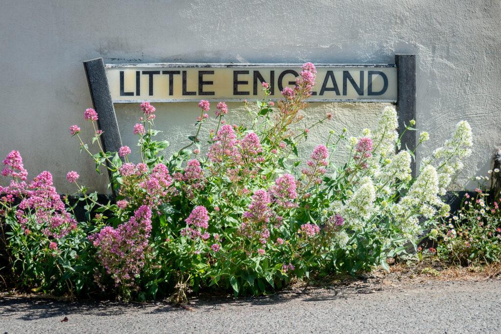 Little England - Othery, Somerset, UK. ID JB1_3453