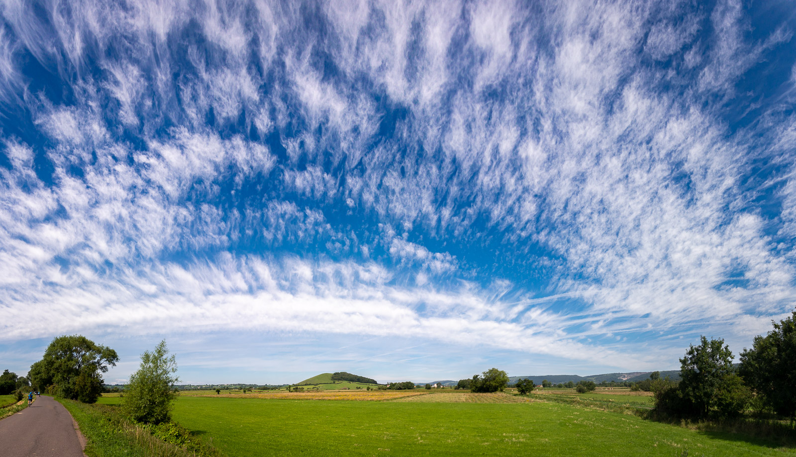 Nyland Hill - Nr Cheddar, Somerset, UK. ID DSC_9156P2