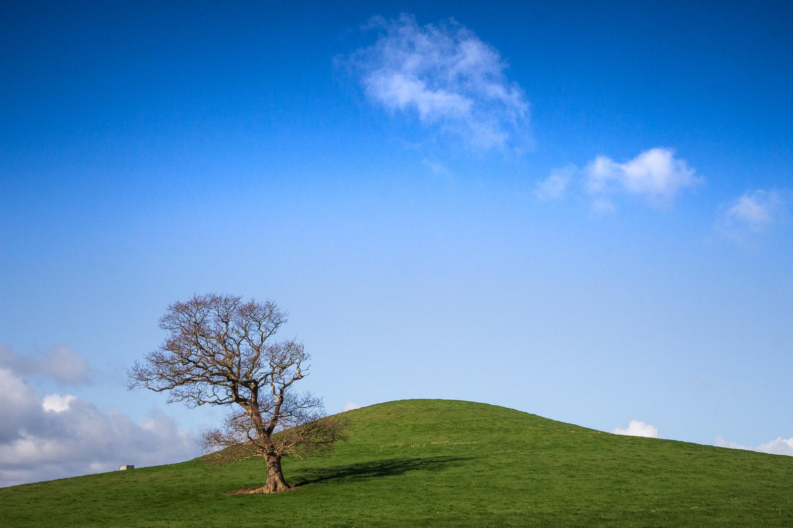 Windmill Hill - Westbury-sub-Mendip, Somerset, UK. ID IMG_5000