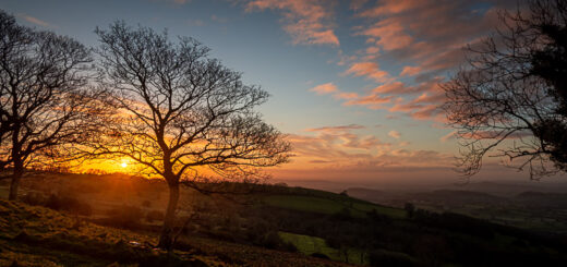 Sunrise - Lynchcombe, Somerset, UK. ID JB1_0513H