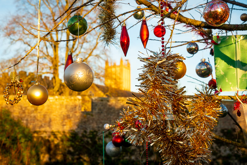 Christmas Tree - Bishops Palace, Wells, Somerset, UK. ID JB1_0921