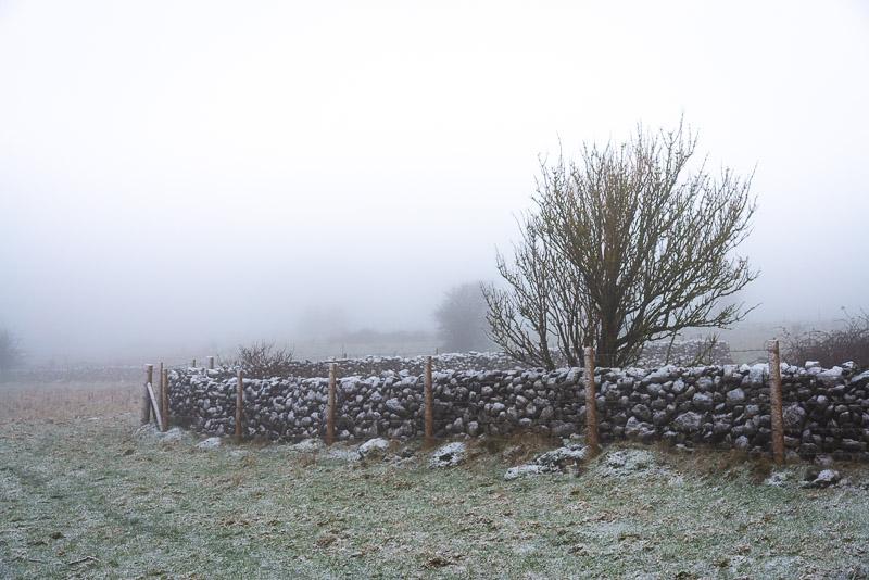 Dearleap - Mendip Hills, Somerset, UK. ID JB1_1104
