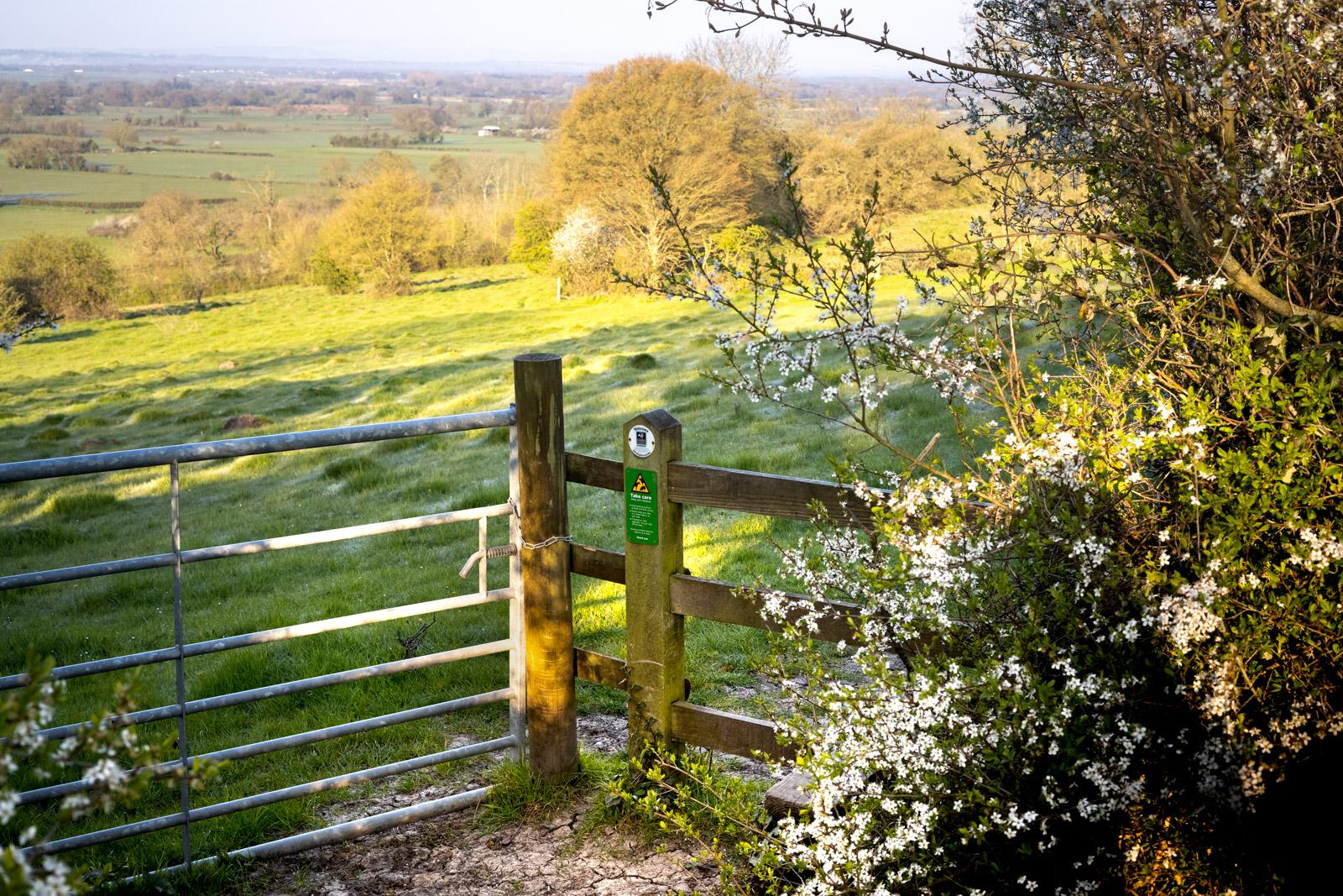 Welcome to Yarley Fields- Somerset, UK. ID B011726