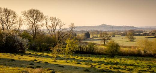 Yarley Fields - Somerset, UK. ID B011679