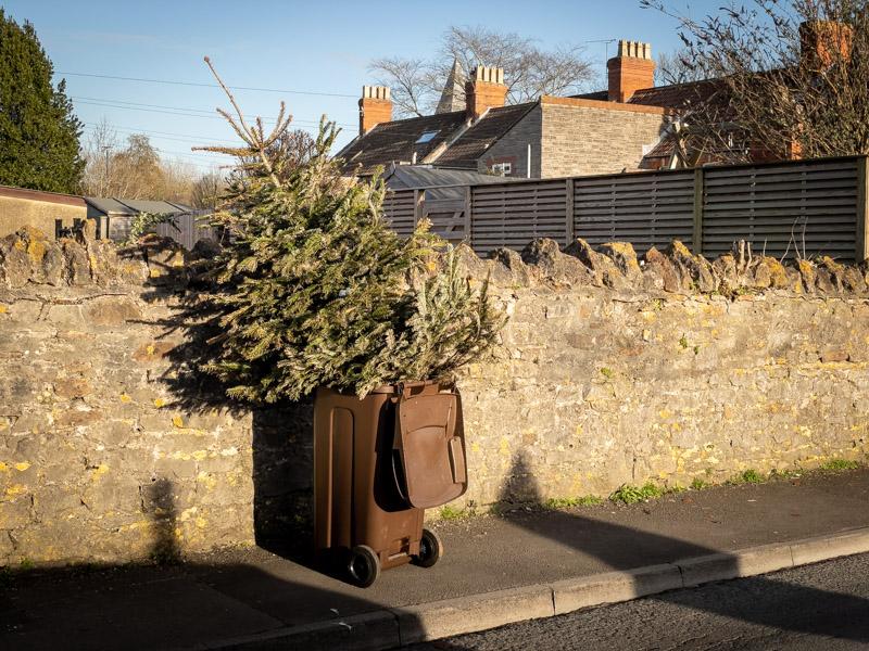 Christmas is over - Wells, Somerset, UK. ID IMG_2493