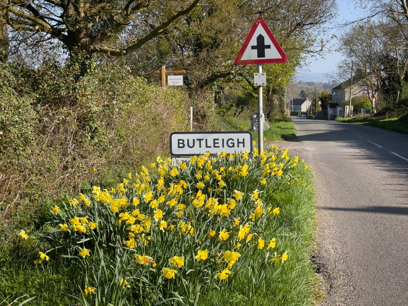 Butleigh - Somerset, UK. ID IMG_2873