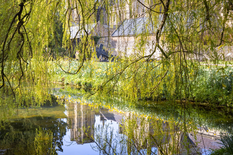 Reflections - Bishops Palace, Wells, Somerset, UK. ID K2A0697