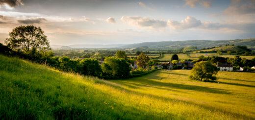 Last Sun - Henton, Somerset, UK. ID 804_6428