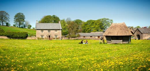 Spring Picnic on the Village Green - Priddy, Mendip Hills, Somerset, UK. ID 825_9581