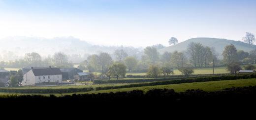 Garden End Farm - Theale, Somerset, UK. ID BR54475