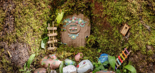 Fairy Land - Biddle Combe, Wells, Somerset, UK. ID BR56759