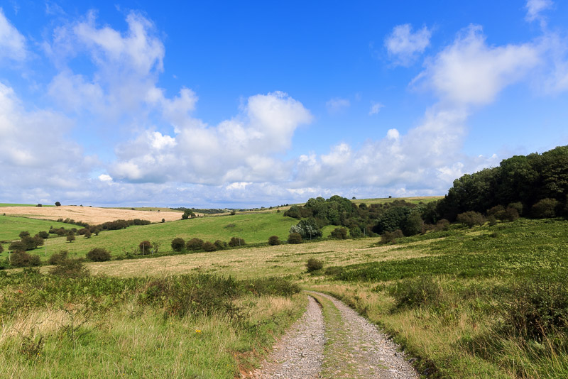 Middledown - Mendip Hills, Somerset, UK. ID BR54085