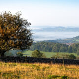 Somerset Mist - From Rookham, above Wells, Mendip Hills, Somerset, UK. ID BR54830