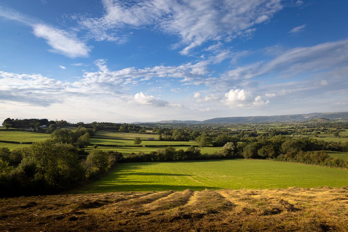 Bagley Fields - Nr Wedmore, Somerset, UK. ID BR55752