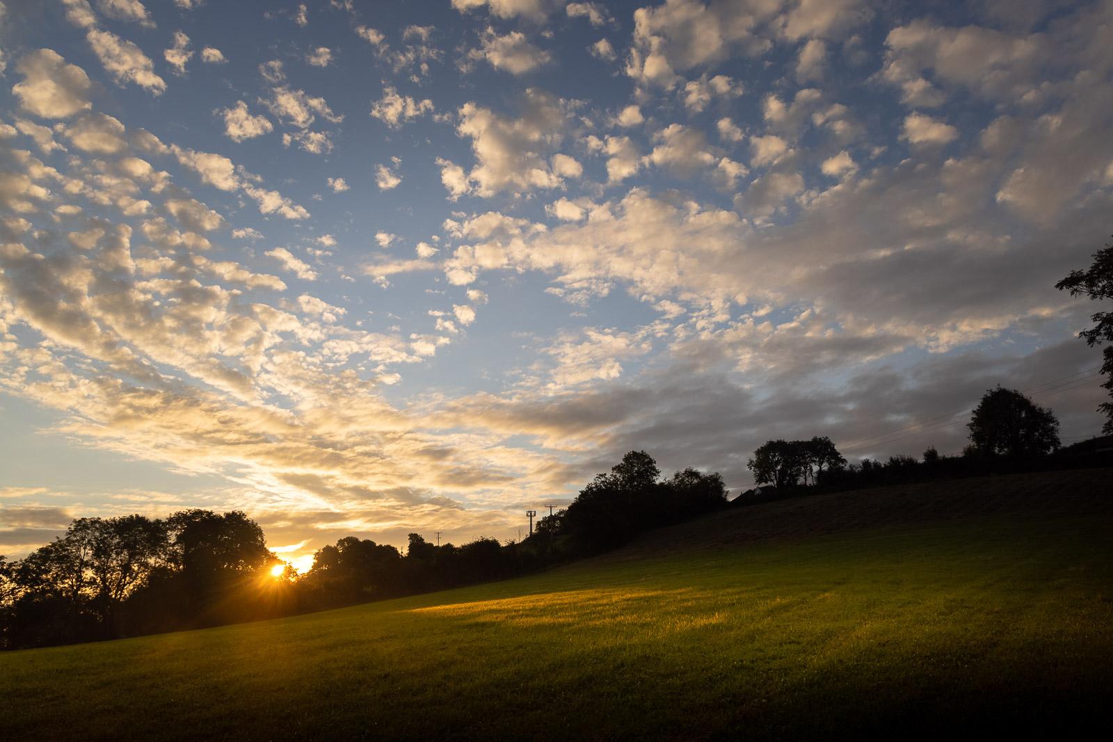 Sunrise at Bagley Fields - Nr Wedmore, Somerset, UK. ID BR55822