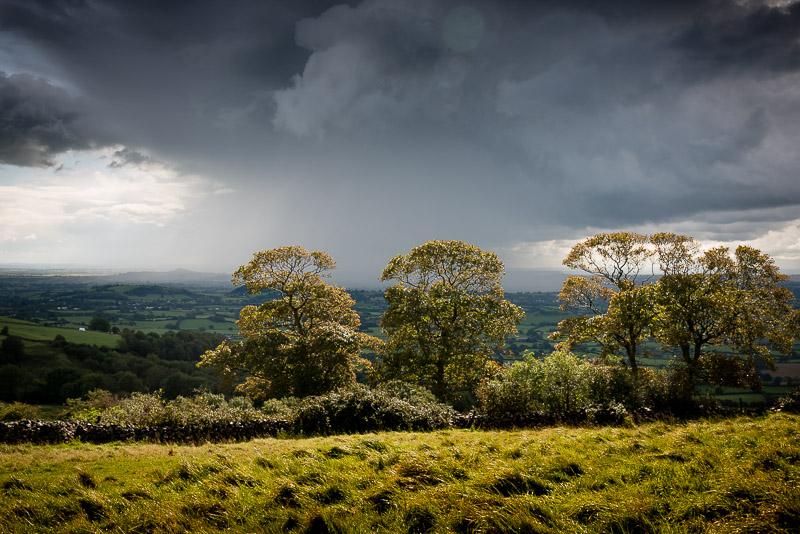Sunshine and Showers - Lynchcombe, Somerset, UK. ID 823_3713