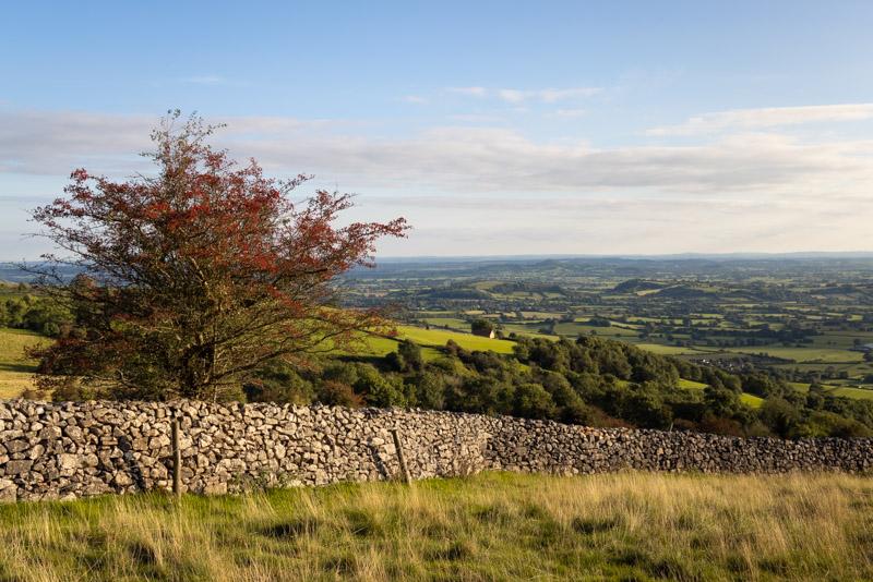 Cooks Fields - Mendip Hills, Somerset, UK. ID BR57115