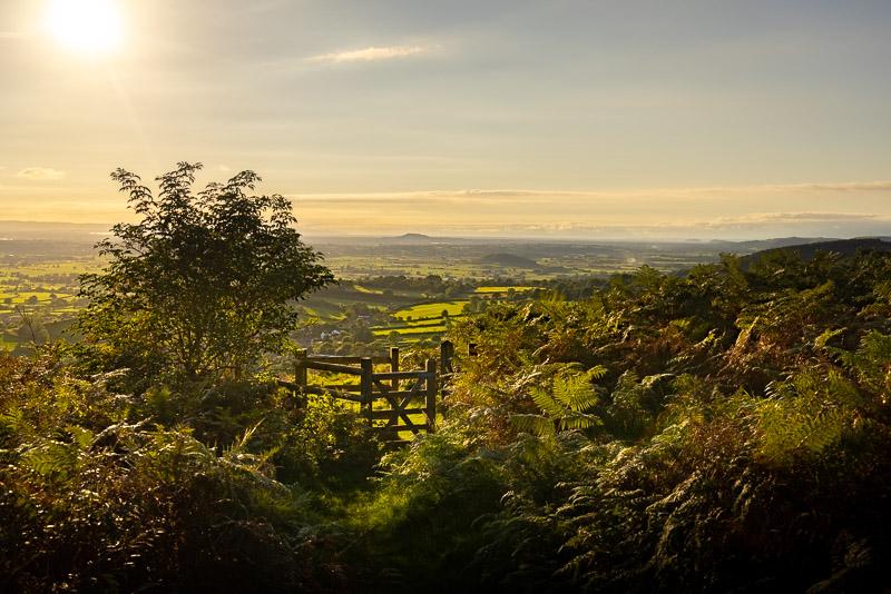 Lynchcombe Gate - Lynchcombe, Mendip Hills, Somerset, UK. ID BR57131