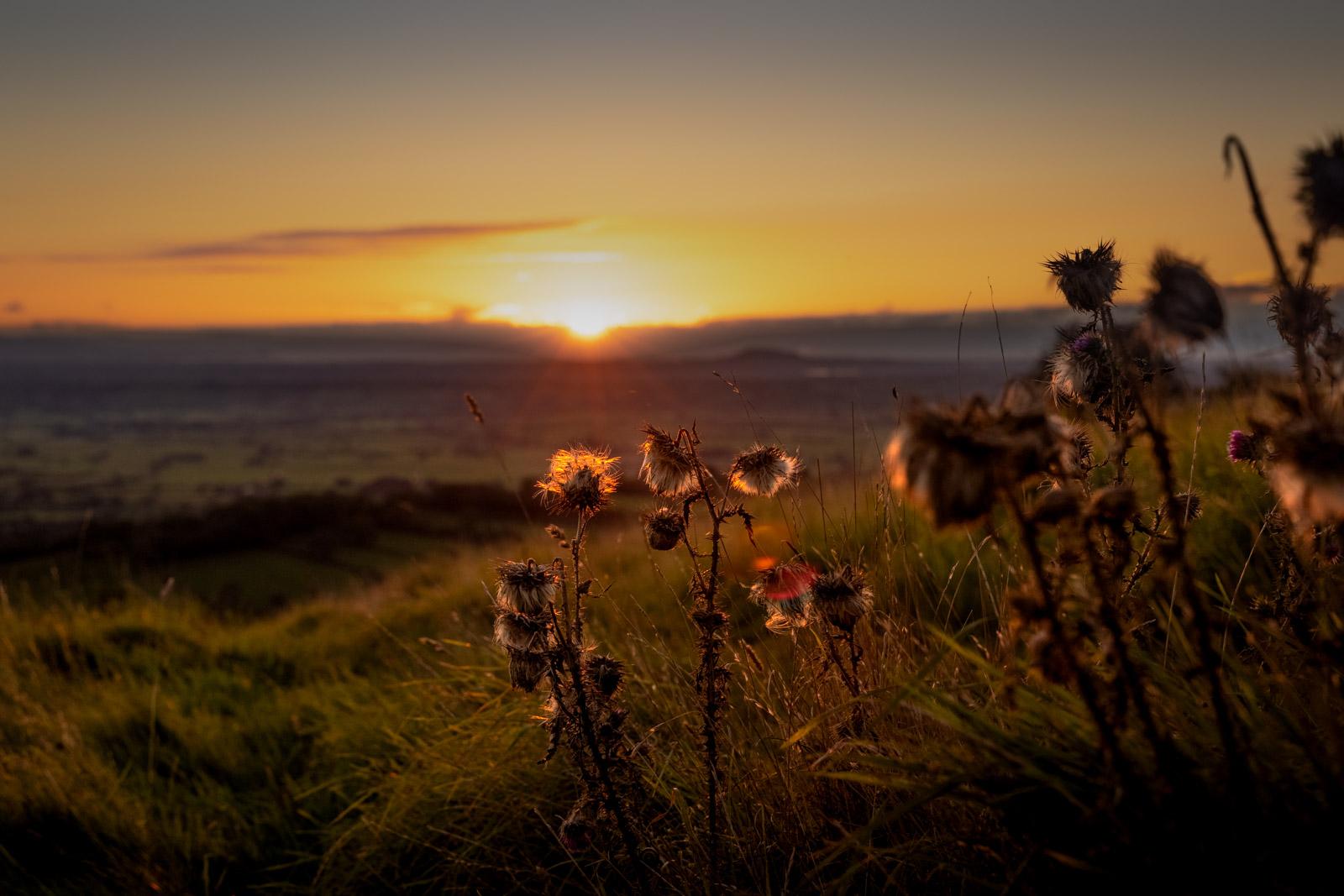 Autumn Equinox - Lynchcombe, Mendip Hills, Somerset, UK. ID BR57509