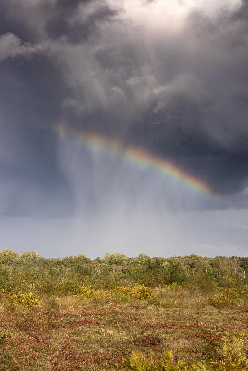Disolving Rainbow - Westhay Moor, Somerset, UK. ID BR57812