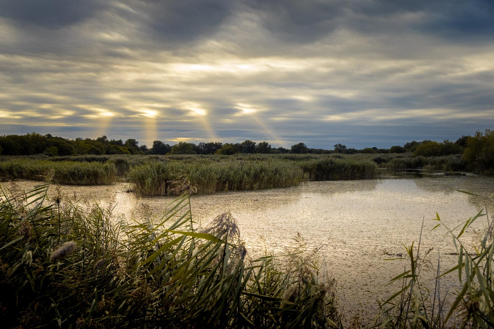 Strange Lights - Westhay Moor, Somerset, UK. ID BR58538