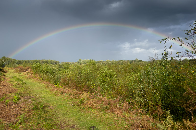 Rainbow over the mire - Westhay, Somerset, UK. ID BR57759
