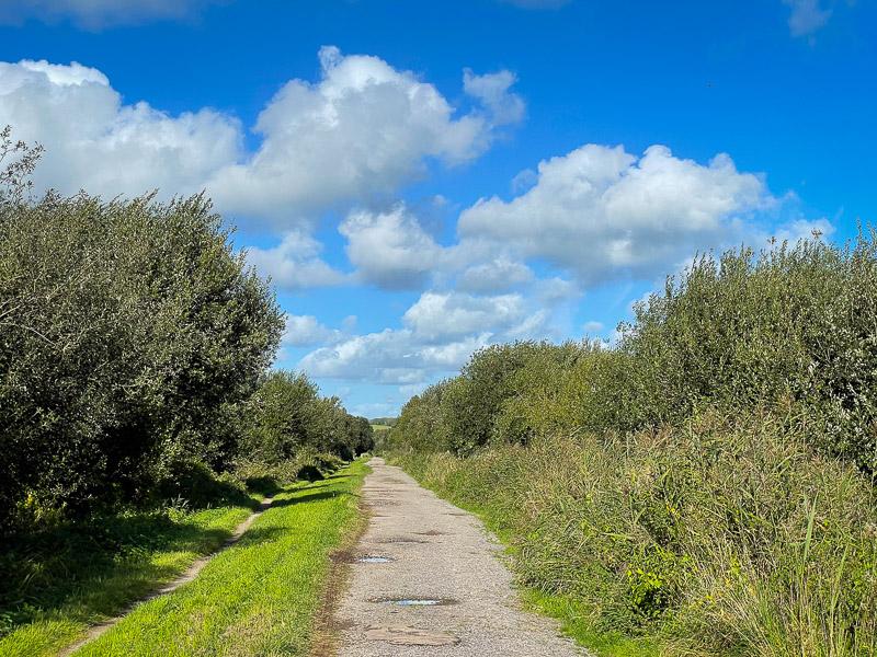 Dagg's Lane Drove - Westhay, Somerset, UK. ID IMG_5797